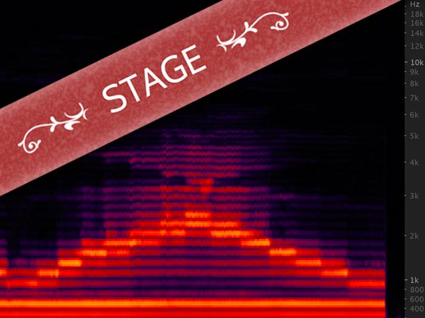 Stage de chant diphonique